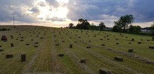 Hay for sale. for Sale in Jonesborough, TN