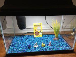 fish Tank for Sale in Idaho Falls, ID