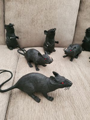 Halloween squeaky scary rats for Sale in St. Petersburg, FL