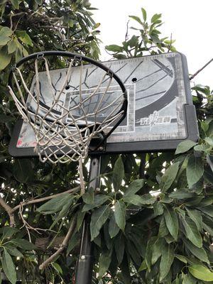 Full size basketball hoop for Sale in Santa Ana, CA