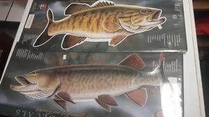 Fish decals for truck/car/boat for Sale in Dayton, OH