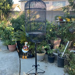 Steel Bird Cage for Sale in Highland, CA