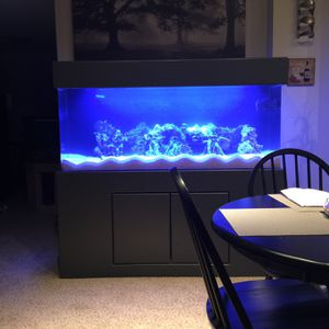 125 Gal. Acrylic Fish Tank for Sale in Chicago, IL