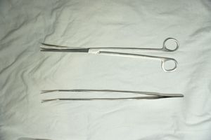 Aquarium Stainless Scissor for plants grass for Sale in New York, NY