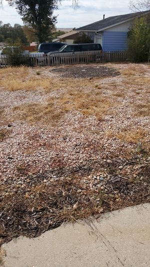 Free Rocks for Sale in Colorado Springs, CO