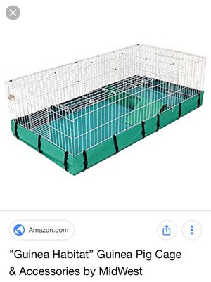 Guinea pig plus habitat for Sale in Cleveland, OH