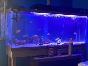 Fish Tank for Sale in Lawrenceville, GA