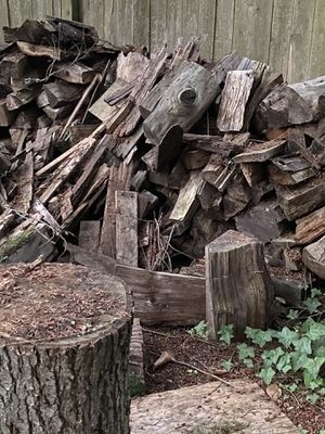 Firewood FREE for Sale in Tacoma, WA