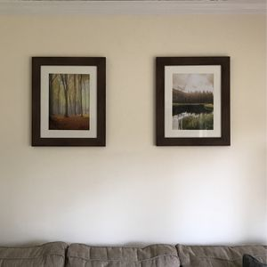 Nature Photo Wall Art for Sale in Fairfield, CT