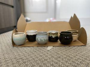 Succulent pots for Sale in Ann Arbor, MI