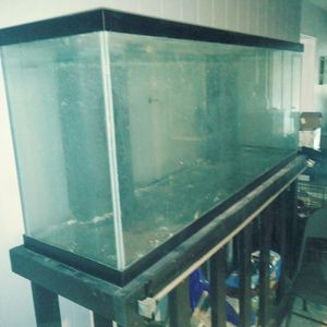 170 Gallon Fishtank With Working Pump And Extras/ Stand Included for Sale in Largo, FL