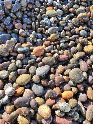 """50 lb bag .Mexican beach pebble mix color size ½-1"""" & 1-2""""landscaping decor multicolor for Sale in Lynwood, CA"""