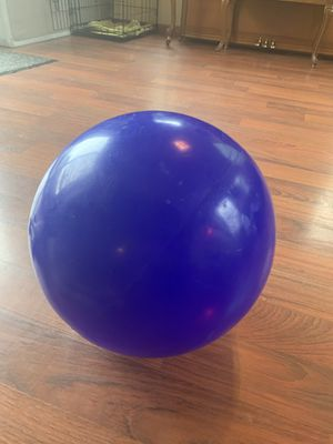 14 inch virtually indestructible dog ball for Sale in Fort Wayne, IN