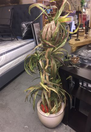 FAKE PLANT DECORATION FOR $80 for Sale in Las Vegas, NV