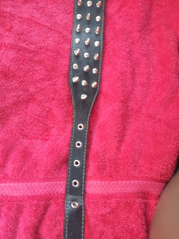 Thick leather stud & spike dog collar