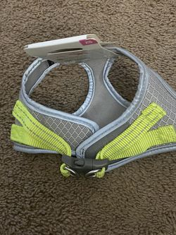Dog Harness for Sale in Glendale,  AZ