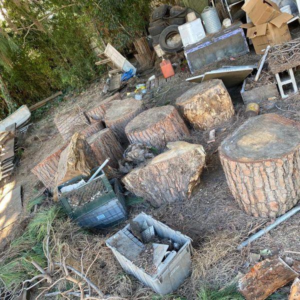 Free Fire Wood FIREWOOD FREE