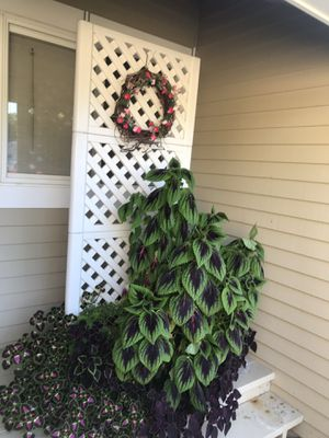 Planter for Sale in Simsbury, CT