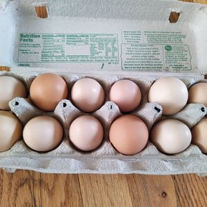 Fresh Chicken Eggs for Sale in Portland, OR