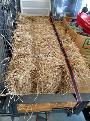 Hay Free for Sale in Cape Coral, FL