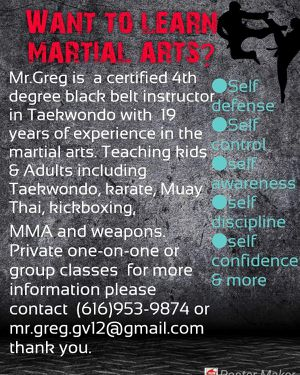 Martial Arts Lessons for Sale in Hamilton, MI