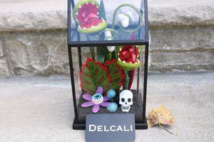 Target Hyde and eek skull terrarium ghoulish garden succulent for Sale in Rochelle Park, NJ