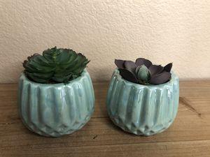Artificial succulents with aqua base for Sale in Chula Vista, CA