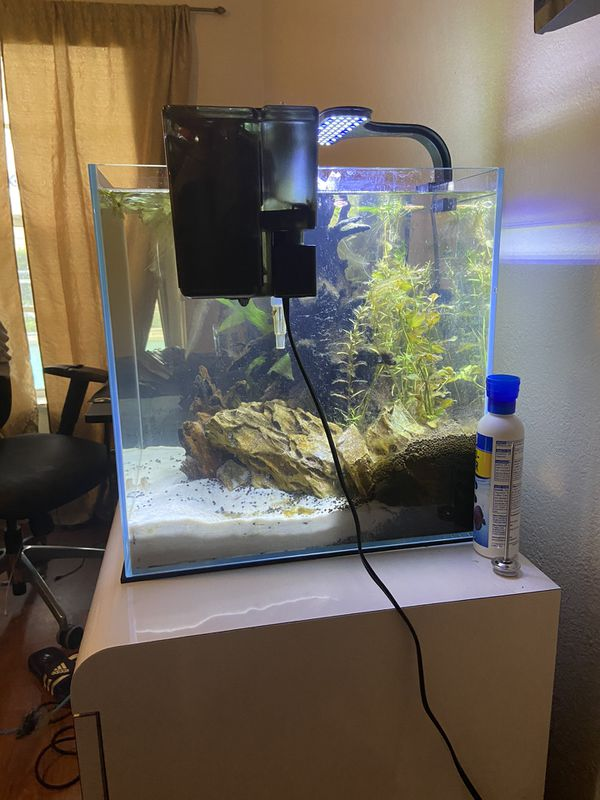 16 gallon aquarium with filter, heater and light.