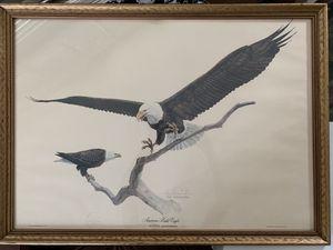 Tom Dunnington, Print American Bald Eagle for Sale, used for sale  Fort Pierce, FL