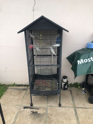 Cage only (( not birds for sale)) for Sale in Miami, FL