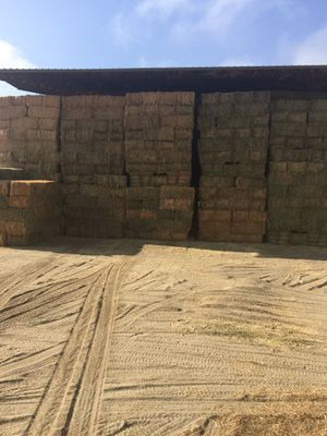 Hay bales for Sale in Ontario, CA