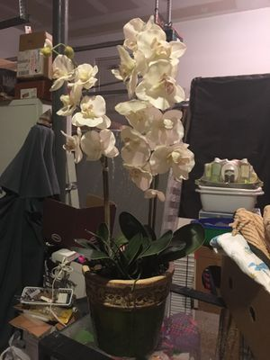 Flowers+pot for Sale in Lansdale, PA