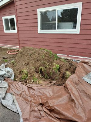 Free fill dirt for Sale in Edmonds, WA