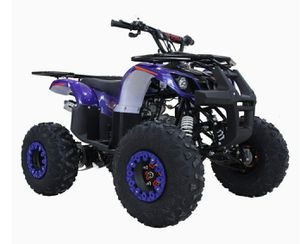4 Wheelers for Sale in Northwood, OH