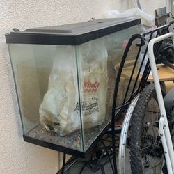 Fish Tank With Pump for Sale in Fresno,  CA