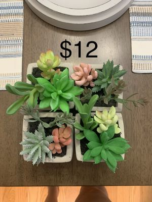 Fake succulents for Sale in Fairview, TN
