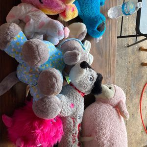 Stuffed Animals for Sale in Winter Haven, FL