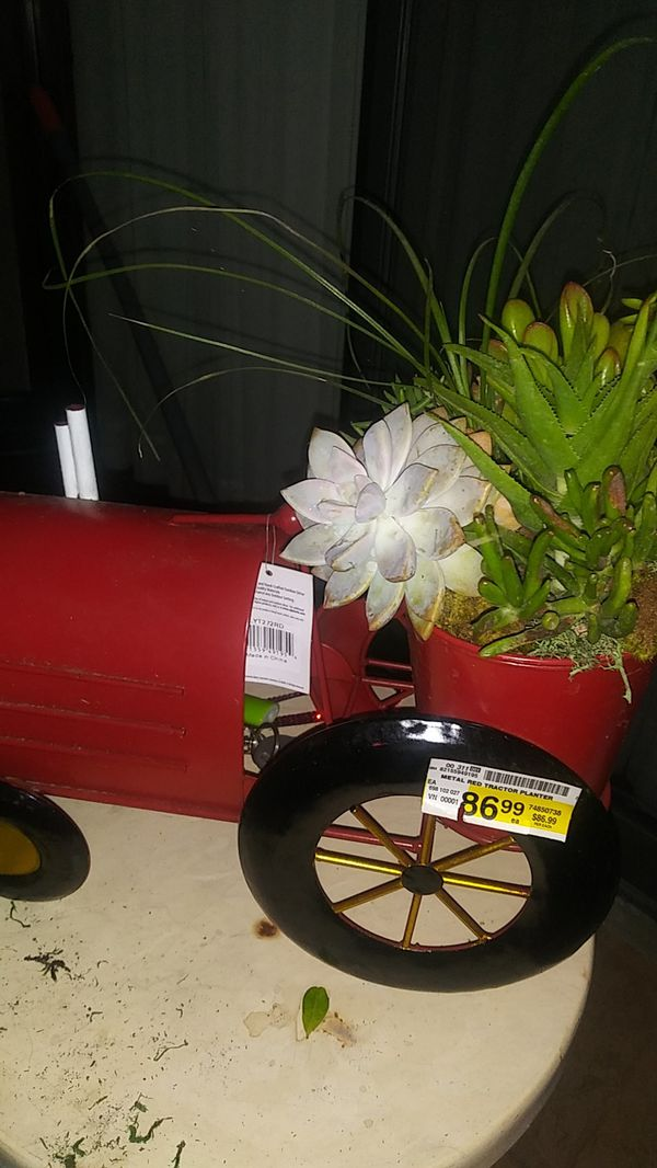 Tractor full of succulents