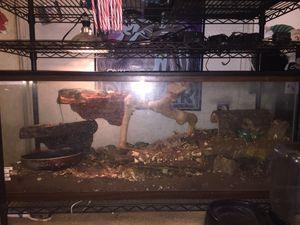 75 Gallon Reptile Tank for Sale in Piney Flats, TN