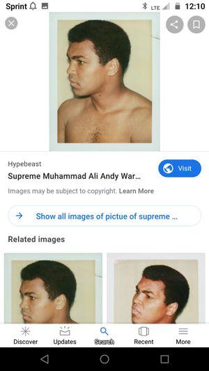 Supreme Ali for Sale in Manassas, VA