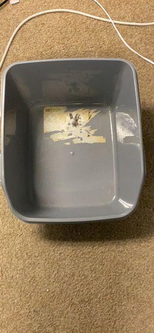 Litter box for Sale in Grand Rapids, MI