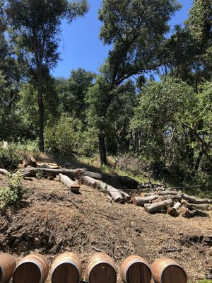 Firewood Oak for Sale in Paso Robles, CA
