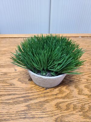 Fake plant for Sale in Millersville, MD
