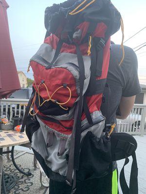 Cabela hiking backpack for Sale in Roseville, MI