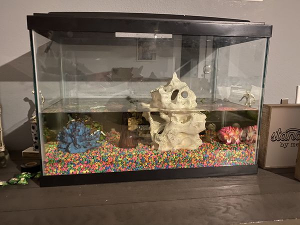 Fish tank with 6 decor items included. Fish not included .