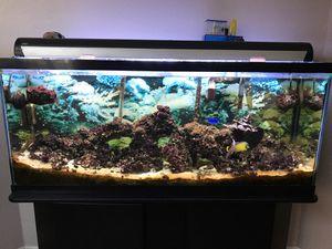 Aquarium for Sale in Sacramento, CA
