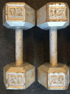 20lb Dumbbells for Sale in Modesto, CA