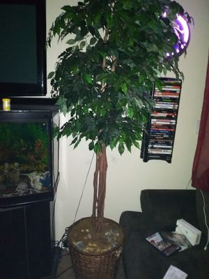 Tree plant.,part real, leaves fake for Sale in Gresham, OR