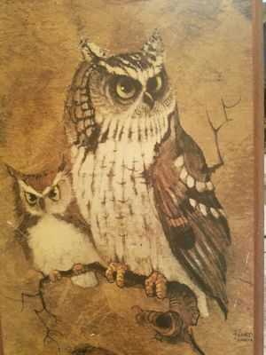 OWL DECOR for Sale in BROOKSIDE VL, TX