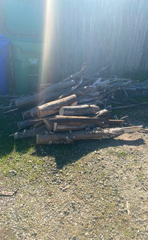 Free fire wood tree fell over the weekend for Sale in Santa Cruz, CA